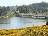 mapuchesfight_pinochet_highway1