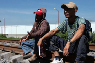 labestia_migrantes1