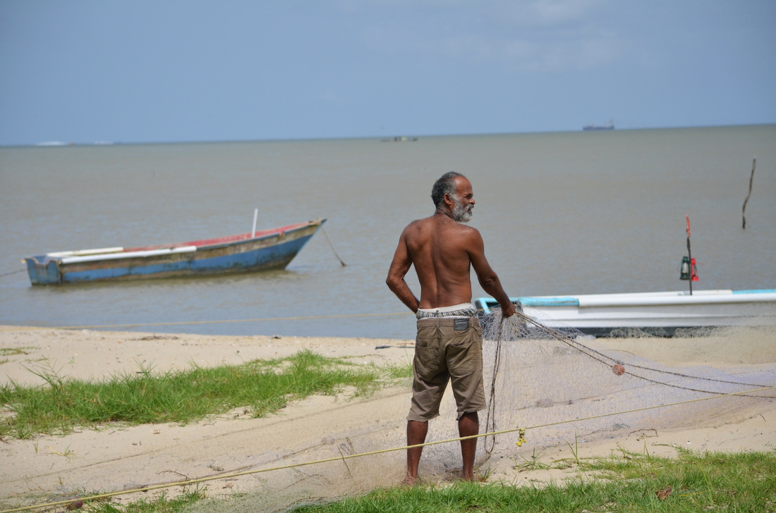 A fisherman pulls in his nets from the Gulf of Paria on the Trinidad's west coast. Due to high levels of pollution, certain marine species from the gulf may not be suitable for consumption.