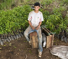Coffee Grower in Ecuador (Diego Cupolo)