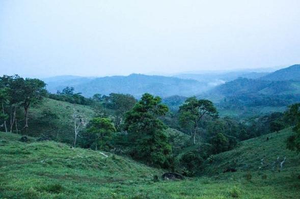 Tierra comunal