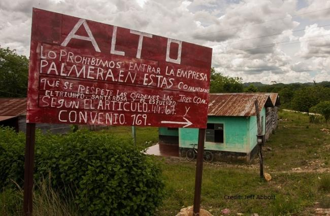 "A sign reading ""Stop: We forbid palm companies from entering these communities"" in Alta Verapaz, Guatemala. Jeff Abbott"